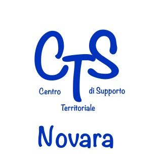 Formazione in servizio dei docenti specializzati sul sostegno relativa ai temi della disabilità, per la promozione di figure di coordinamento